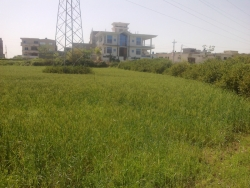 Commercial for Sale H-13 ISLAMABAD